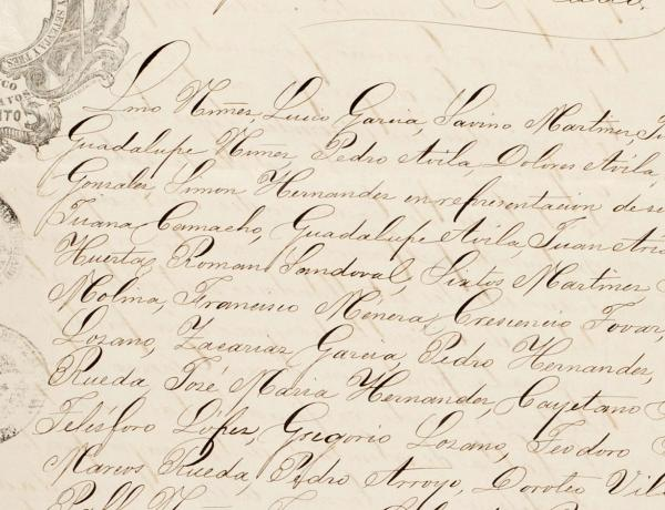 elegant handscript text on aging paper - mexican land privatization document