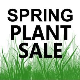 spring plant sale text on green grass